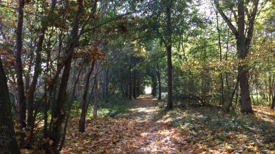Naturområden